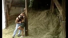 فتاة شقراء في شباك صيد حمراء ، يحب أليكس كول ممارسة الجنس العرضي مع صديقها مقابل المال