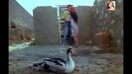 سكس مشاهير مصري و الممثلة لوسى تتفرش وتدعك فى مشهد ساخن جدا