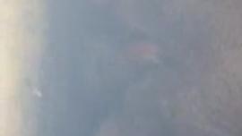 امرأة شقراء ناضجة تركب قضيب ابنها ، بينما كان يحاول تصوير فيديو